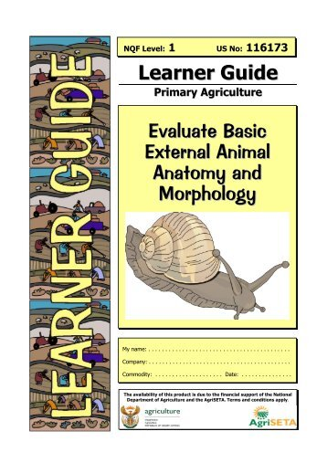 Evaluate External Animal Anatomy and Morphology - AgriSETA
