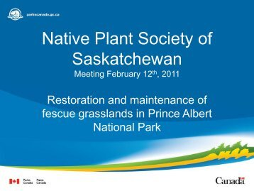 Restoration and Maintenance of Fescue Grasslands in Prince Albert ...