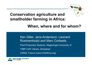 Conservation agriculture and smallholder farming in Africa