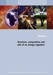 Structure, composition and role of an energy regulator - unido