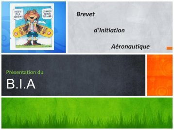 Brevet d'Initiation Aéronautique - IMS