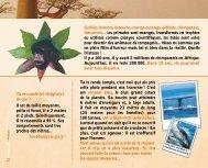 Téléchargez le carnet de voyage - Les pieds sur terre
