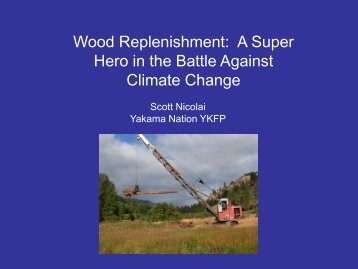 Wood Replenishment: A Super Hero in the Battle Against Climate ...