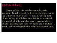 Kronik Hepatitler-1