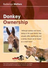 Donkey Lft 13/10/04 - Redwings