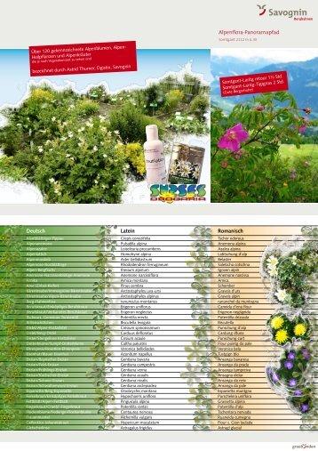 Alpenpanoramapfad Flyer - Drogaria Surses