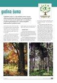 broj 31 - DRVOtehnika - Page 7