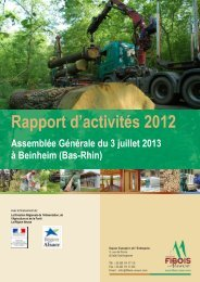 Rapport d'activités 2012 - FIBOIS Alsace