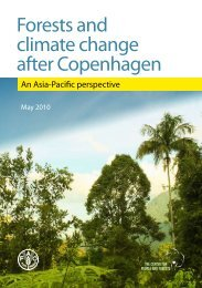 Forests and climate change after Copenhagen - UNDPCC.org