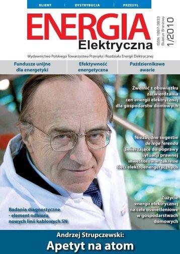 numer 1/2010 - E-elektryczna.pl