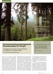 Die Ausweisung klimawandelangepasster ... - Wald & Klima