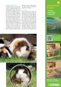 Ab ins Grüne! - Petplus24 - Page 4