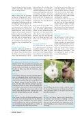 Ab ins Grüne! - Petplus24 - Page 5