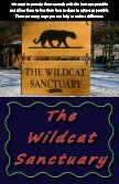 Kids Helping Wildcats - The Wildcat Sanctuary - Page 2