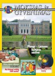 Kas kuria Žemės magnetinį lauką - Vilniaus universitetas