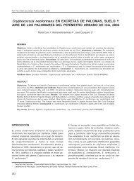 Cryptococcus neoformans en excretas de palomas, suelo y ... - SciELO
