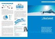 Case Study - Blue Summit Media GmbH