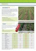Kukorica - Kwizda - Page 4