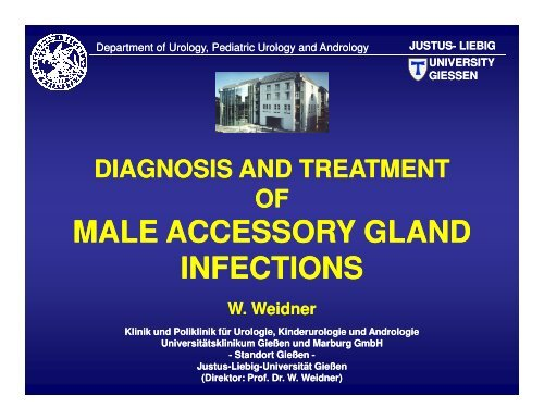 Diagnosis and treatment of male accessory gland infections - eshre