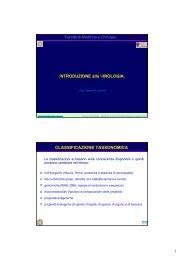 INTRODUZIONE alla VIROLOGIA - Sezione di Microbiologia