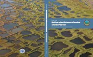 Ninth International Conference on Permafrost ... - IARC Research