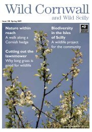Issue 108 Spring 2009 - Cornwall Wildlife Trust