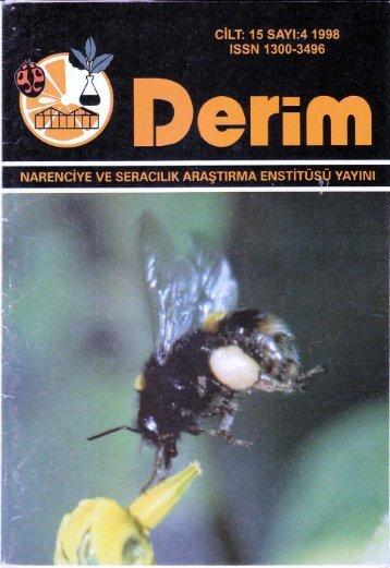 Özet/Tam metin