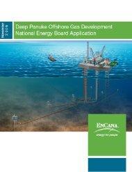 deep panuke offshore gas development - Encana