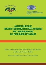 Analisi funzioni fondamentali.pdf - UPI - Unione delle Province d'Italia