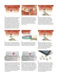 Download - Zimmer Dental - Page 2