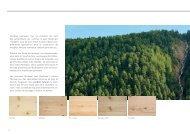 Panneaux en bois massif 3-plis - Nordpan