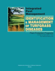 IdentIfIcatIon & ManageMent of turfgrass dIseases - Integrated Pest ...