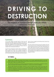 Driving to Destruction - ActionAid
