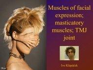 masticatory muscles - Anatomický ústav 1.LF UK