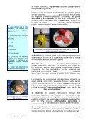UNIDAD 2 - Page 5