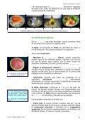UNIDAD 2 - Page 7