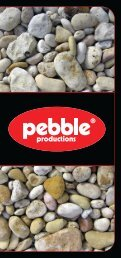 SIO Pebble Leaflet - Pebble Productions