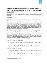 """CURSO DE IDENTIFICACIÃ""""N DE AVES MARINAS ... - SEO/BirdLife"""
