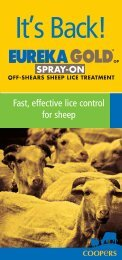 Fast, effective lice control for sheep - Coopers Animal Health