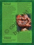 Anabole Steroide und Muskelaufbau: 6 Punkte die es zu beachten ... - Page 6