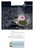 "ETF-Magazin: ""Was tun?"" (Q1 2012) - Börse Frankfurt - Seite 4"