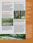 Forest Threat Facts - Southern Research Station - US Department of ... - Page 2