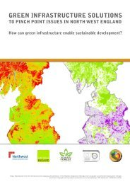 Green Infrastructure Solutions to Pinch Point Issues in the North West