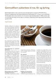 Genmodifisert sukkerbete til mat, fôr og dyrking - Bioteknologinemnda