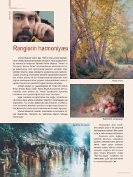 Renglerin harmoniyasι - Irs