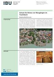 Schutz für Brienz vor Murgängen im Trachtbach - IBU - Institut für ...