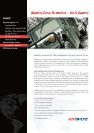 Product Sheet (EU) - AmSafe