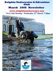March 2008 Newsletter - DolphinUnderwater.org