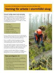 Varning för arbete i stormfälld skog - Säker Skog