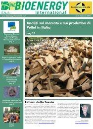 Analisi sul mercato e sui produttori di Pellet in Italia - Novator